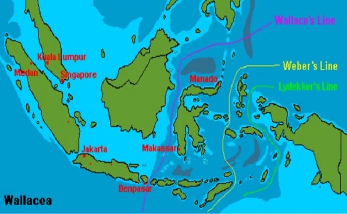 Peta Berdasarkan Garis wallace dan weber