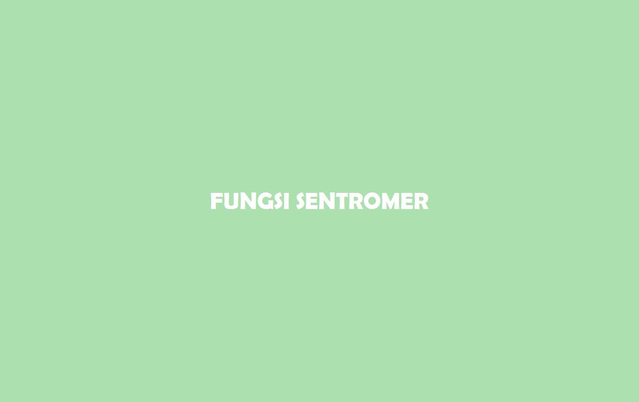 Fungsi Sentromer