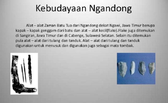 Kebudayaan Ngandong