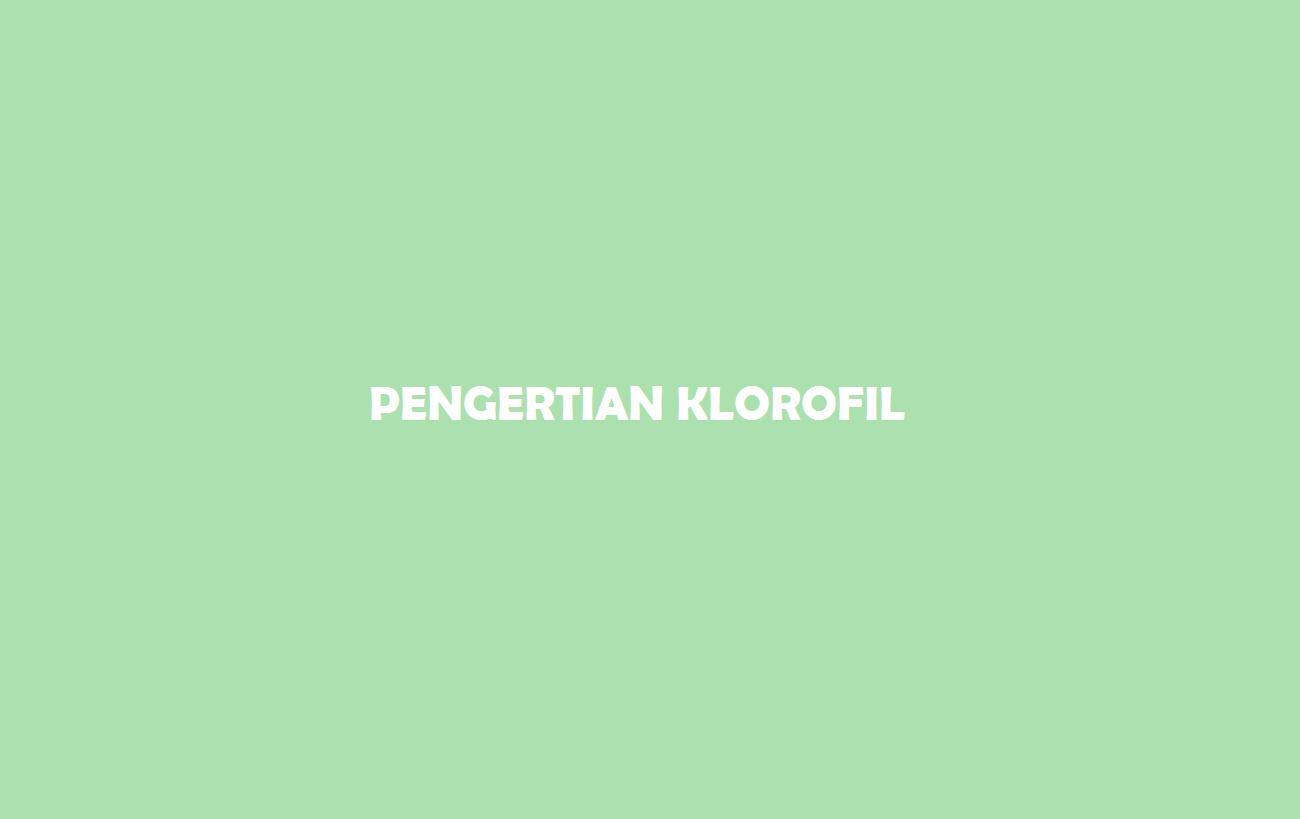 Pengertian Klorofil