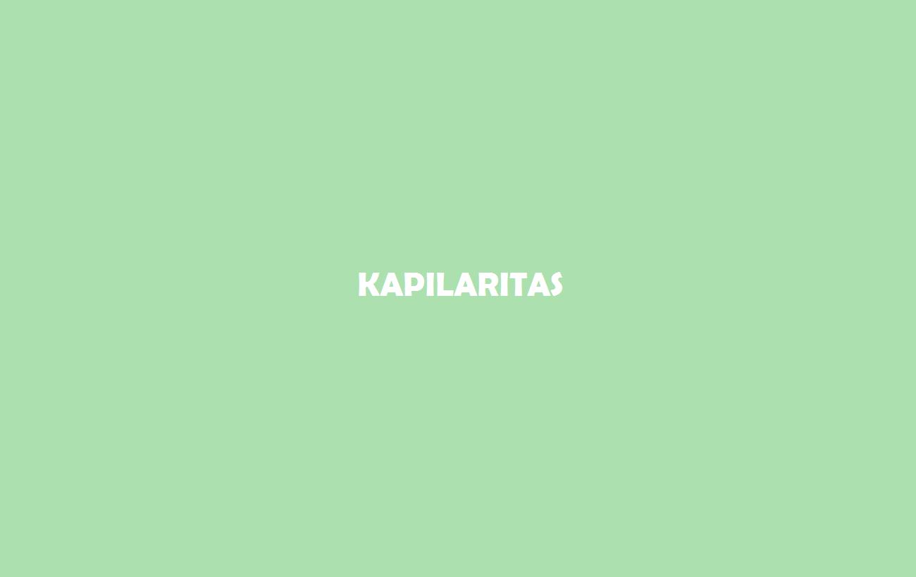 Kapilaritass