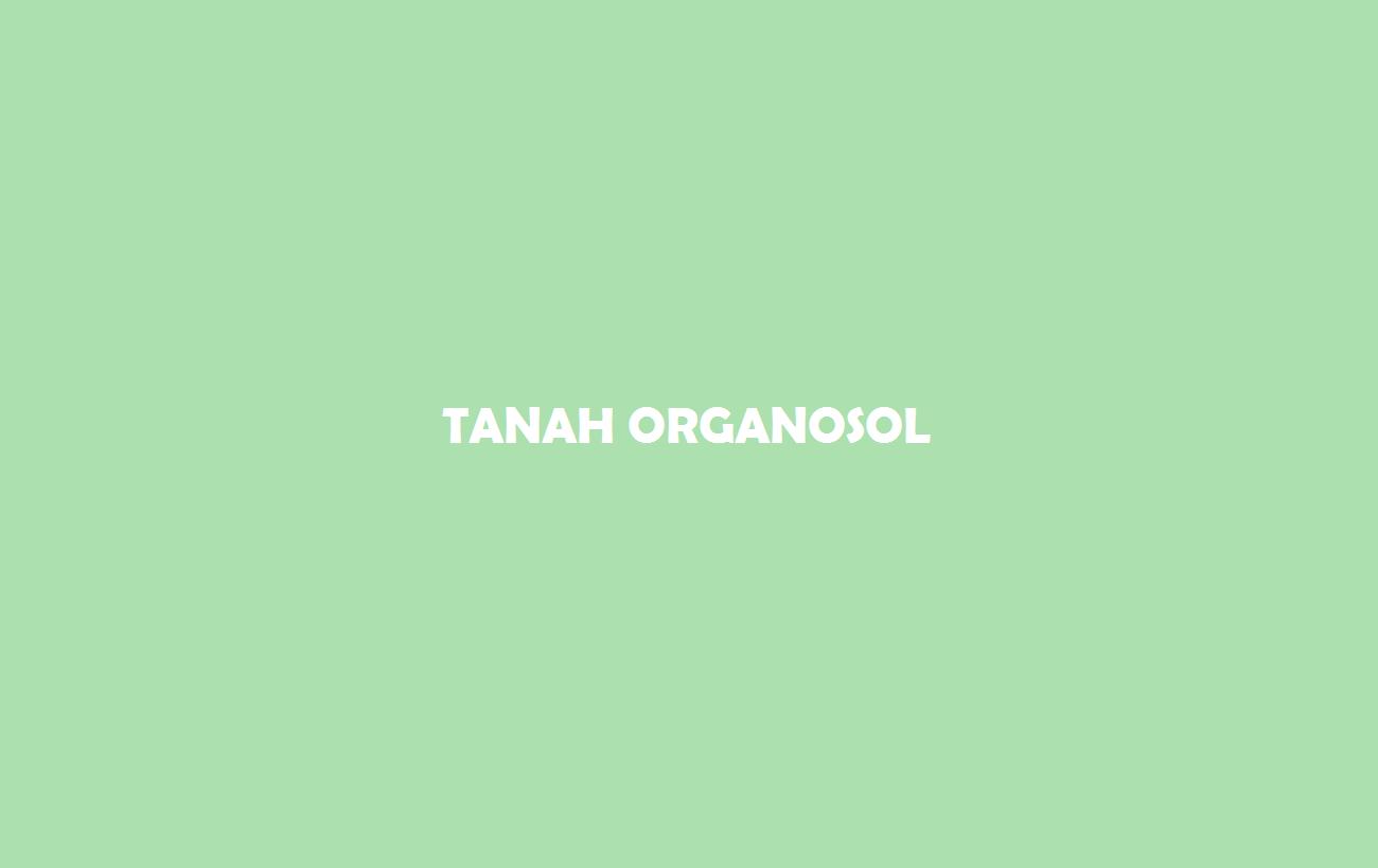 Tanah Organosol