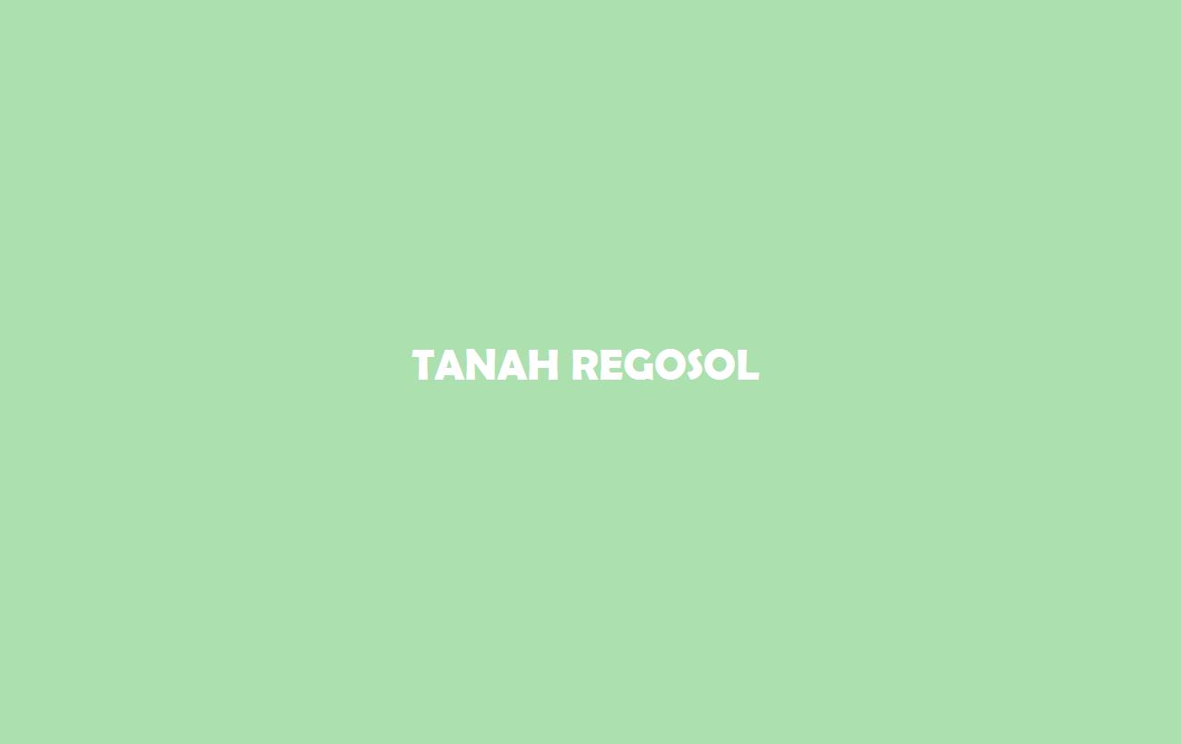 Tanah Regosol