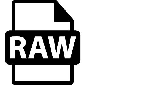 RAW Image Format