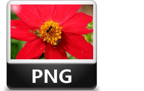 Portable Network Graphics