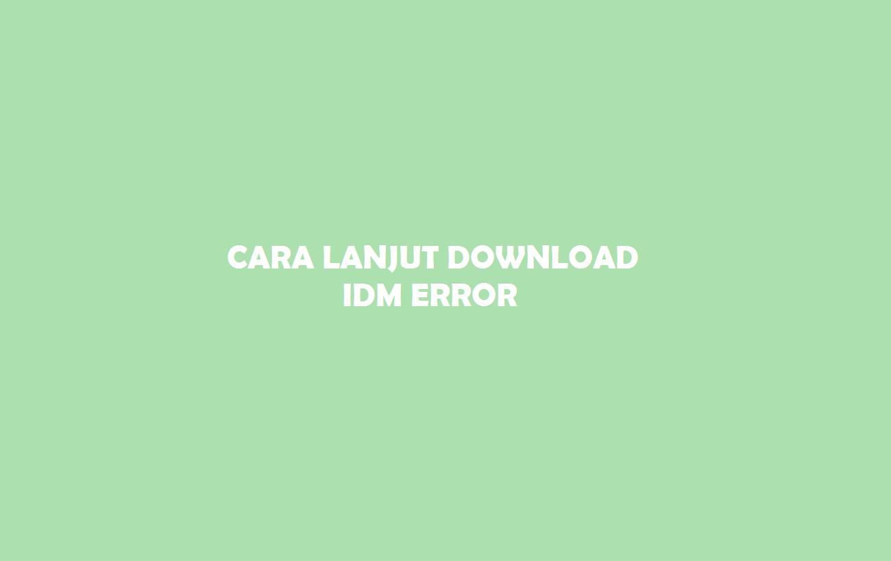 IDM Error
