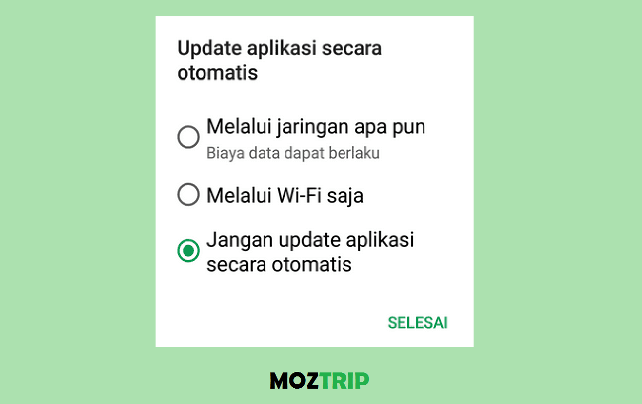 Setting Update Playstore